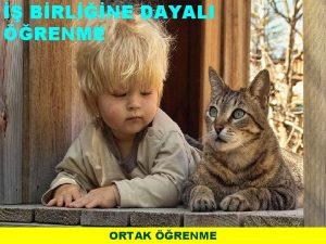 BRLNE DAYALI RENME ORTAK RENME Aktif renme Aktif
