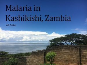 Malaria in Kashikishi Zambia Alli Eskina Course Objectives