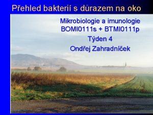 Pehled bakteri s drazem na oko Mikrobiologie a