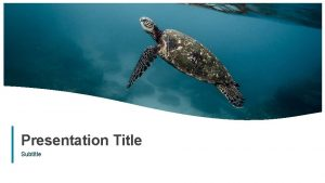 Presentation Title Subtitle 1 Presentation Title 2 Subtitle