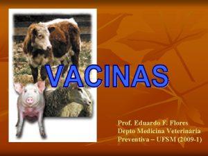 Prof Eduardo F Flores Depto Medicina Veterinria Preventiva
