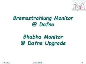 Bremsstrahlung Monitor Dafne Bhabha Monitor Dafne Upgrade F