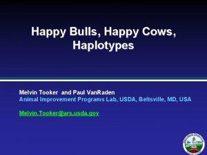 Happy Bulls Happy Cows Haplotypes Melvin Tooker and
