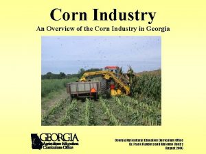 Corn Industry An Overview of the Corn Industry