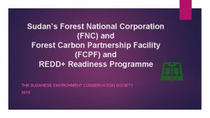Sudans Forest National Corporation FNC and Forest Carbon