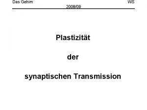 Das Gehirn WS 200809 Plastizitt der synaptischen Transmission