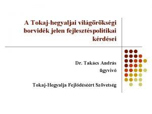 A Tokajhegyaljai vilgrksgi borvidk jelen fejlesztspolitikai krdsei Dr