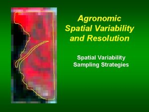 Agronomic Spatial Variability and Resolution Spatial Variability Sampling