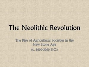 The Neolithic Revolution The Rise of Agricultural Societies