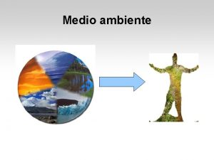 Medio ambiente Medio ambiente Econmico Administrativo Teora de