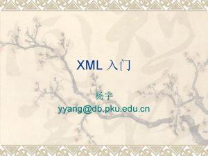 XML yyangdb pku edu cn XML v XML
