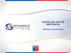 CUIDADO DEL SECTOR BENTONICOS SANTIAGO 6 de Junio