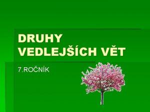 DRUHY VEDLEJCH VT 7 RONK Druhy VEDLEJCH VT