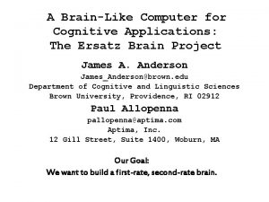 A BrainLike Computer for Cognitive Applications The Ersatz