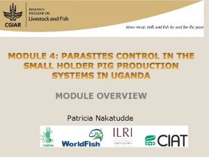 MODULE OVERVIEW Patricia Nakatudde MODULE OVERVIEW 1 2