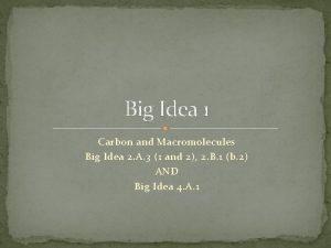 Big Idea 1 Carbon and Macromolecules Big Idea