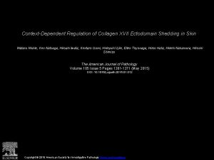ContextDependent Regulation of Collagen XVII Ectodomain Shedding in