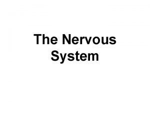 The Nervous System In order to maintain homeostasis